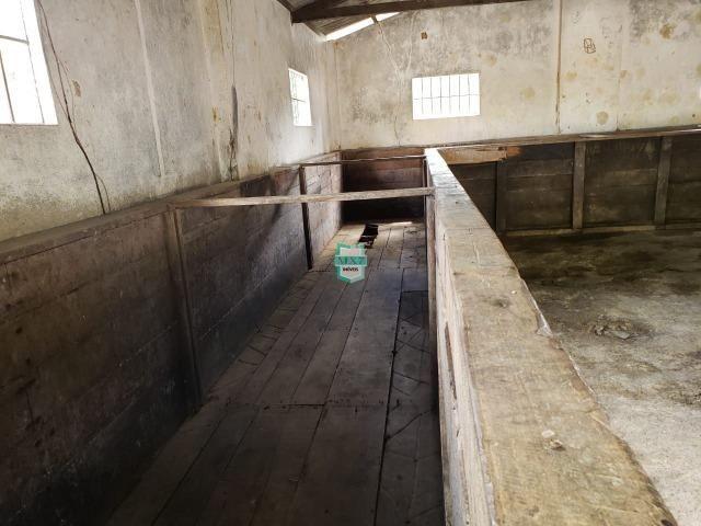 Fazenda de 290 Hectares com toda infraestrutura, rica em água mineral.+ Jazia de Mármore - Foto 15