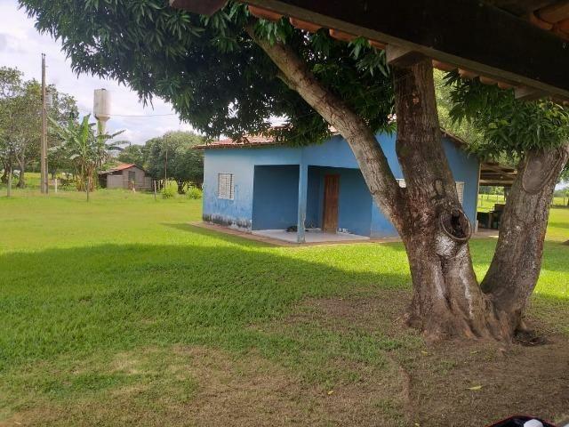 Chácara na região de Santo Antônio de Cuiabá com 32 HA Uma propriedade dos sonhos a 25 - Foto 8