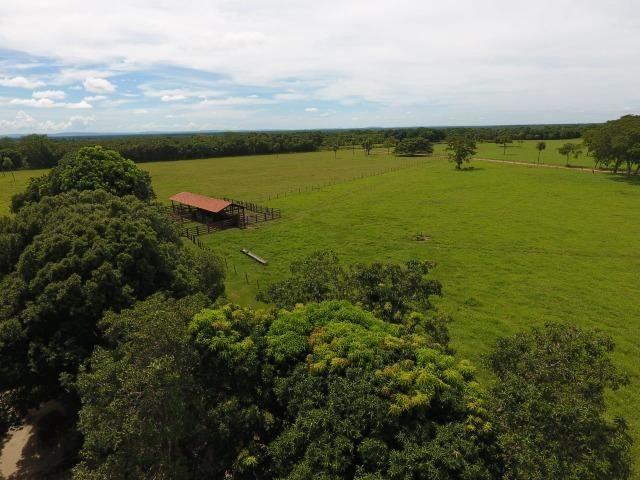 Chácara na região de Santo Antônio de Cuiabá com 32 HA Uma propriedade dos sonhos a 25 - Foto 14