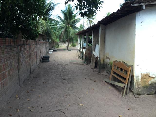 Sol 22 - Excelente Granja sendo 6385m² no Centro - São José de Mipibu - RN - Foto 18