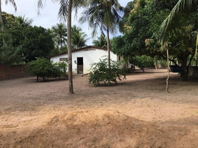 Sol 22 - Excelente Granja sendo 6385m² no Centro - São José de Mipibu - RN - Foto 10