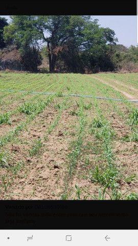 Carretel de irrigação Irrigat.  - Foto 4