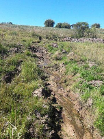 Área com 3,5 Hectares, Passo da Capivara Santa Maria -10022 - Foto 8