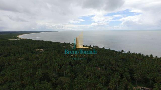 Terreno Residencial em Guaiu - Foto 10