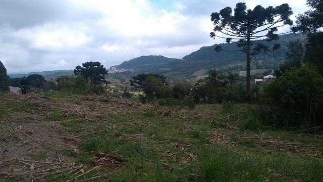 Sítio em Nova Petrópolis com 20,5 hectares - Foto 6