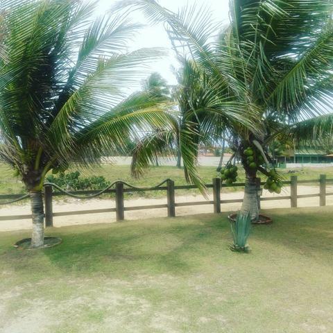 Sobrado Praia Sirinhaém - PE Prox. Porto de Galinhas Ac Permuta Cód. PGL-1 - Foto 20