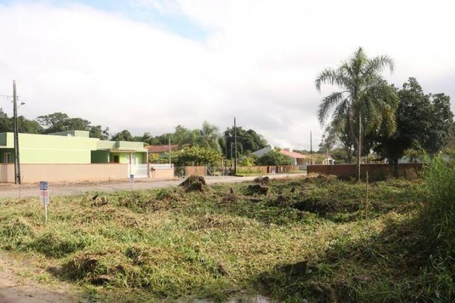Terreno de esquina medindo 384 m² localizado na praia da Barra do Saí !! - Foto 6