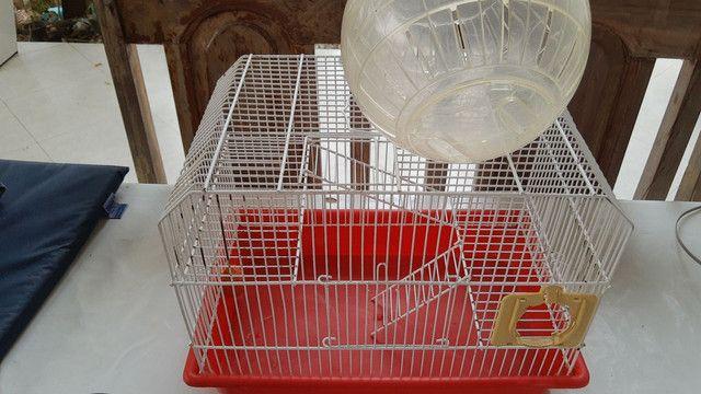 Gaiola de hamster + bola - Foto 2