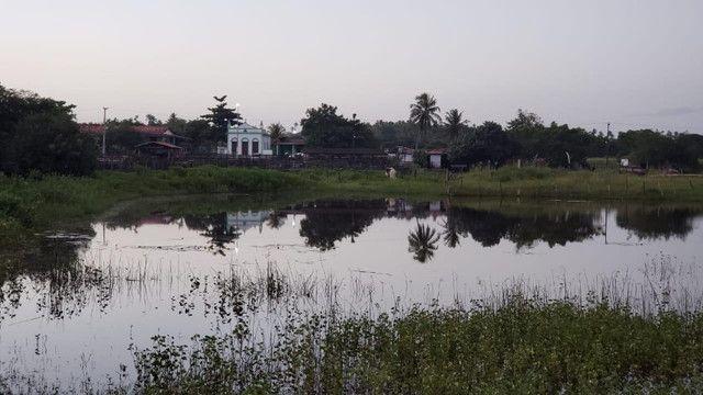 Belíssima fazenda com 295 há em ceara mirim, curral, casas, rio perene,poço - Foto 2