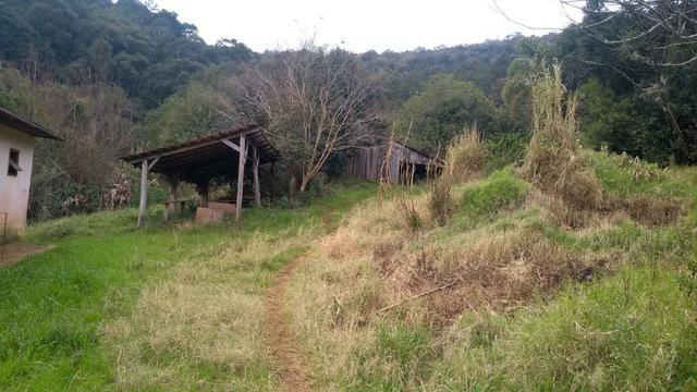 Sítio em Nova Petrópolis com 20,5 hectares - Foto 13