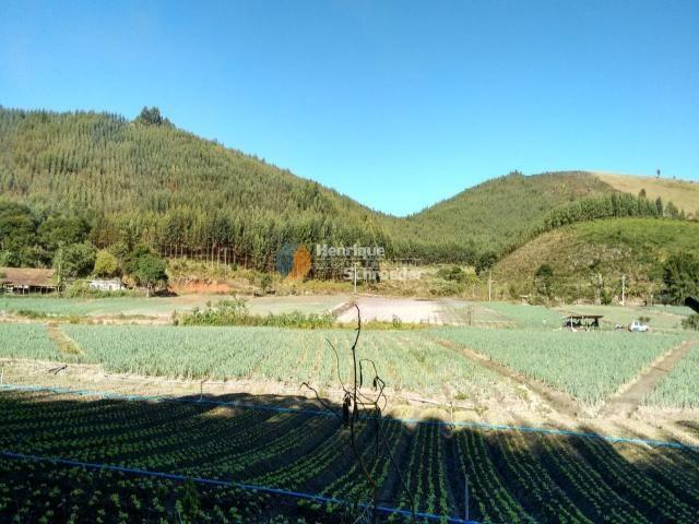Fazenda produtiva, 116 ha, vale alpino, teresópolis, rj - Foto 4