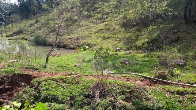 Sítio em Nova Petrópolis com 20,5 hectares - Foto 14