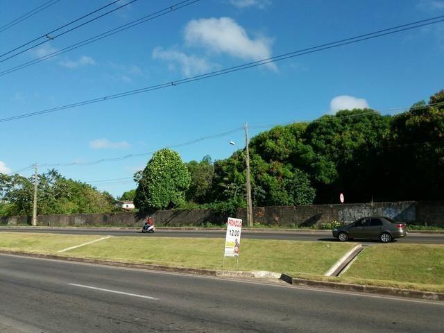 Barbada!!! Vendemos um terreno com 15.000m2 na Avenida Independência - Foto 2