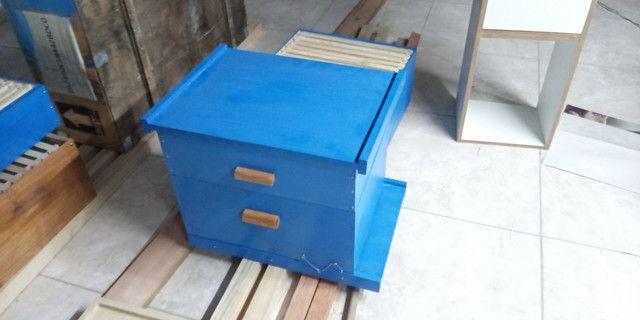 Caixa de abelha ninho e melgueira com quadros. Novos, sem uso.