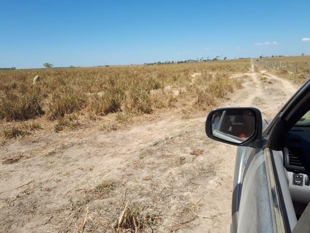 Fazenda de 220 alqueire em Novo Mundo -MT - Foto 10