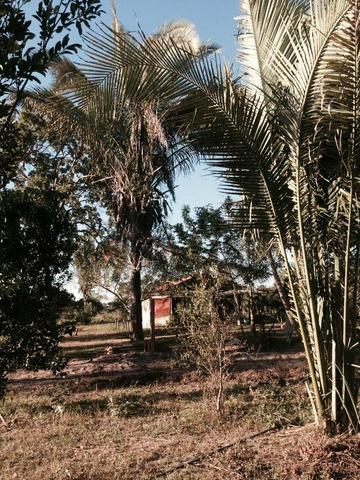 23 hectares p cultura e Psicultura - Foto 9