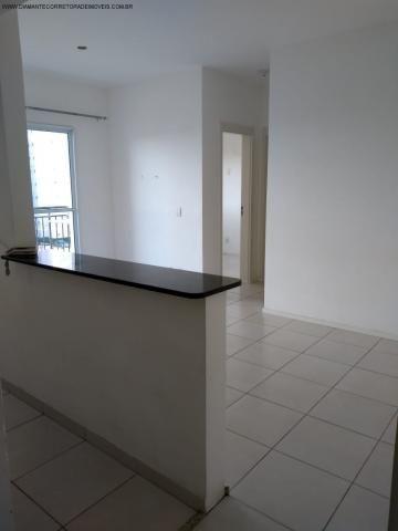 Apartamento à venda com 2 dormitórios em Morada de laranjeiras, Serra cod:AP00140 - Foto 5