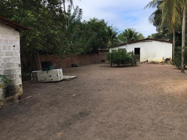 Sol 22 - Excelente Granja sendo 6385m² no Centro - São José de Mipibu - RN - Foto 12