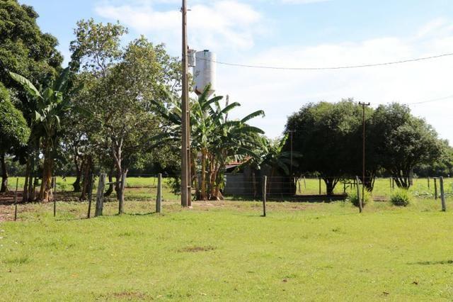 Chácara na região de Santo Antônio de Cuiabá com 32 HA Uma propriedade dos sonhos a 25 - Foto 17