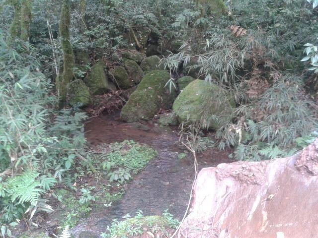 Área própria para chácara à 15 km de Gramado-RS - Foto 9