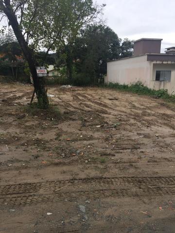Terreno em Zimbros - Foto 3
