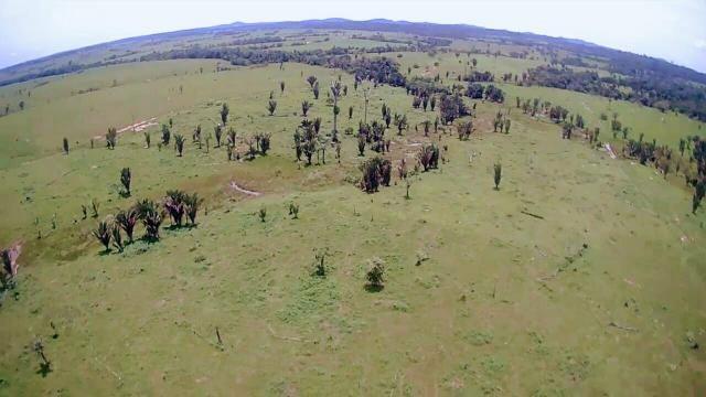 Fazendona 938 hectares ref#129 troca ou venda - Foto 5