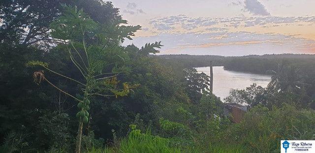Terreno as margens do Rio Jacuípe - Linha Verde - Foto 3