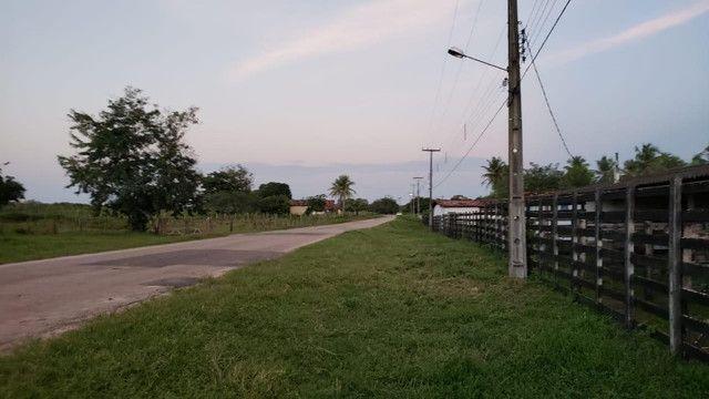 Belíssima fazenda com 295 há em ceara mirim, curral, casas, rio perene,poço - Foto 20