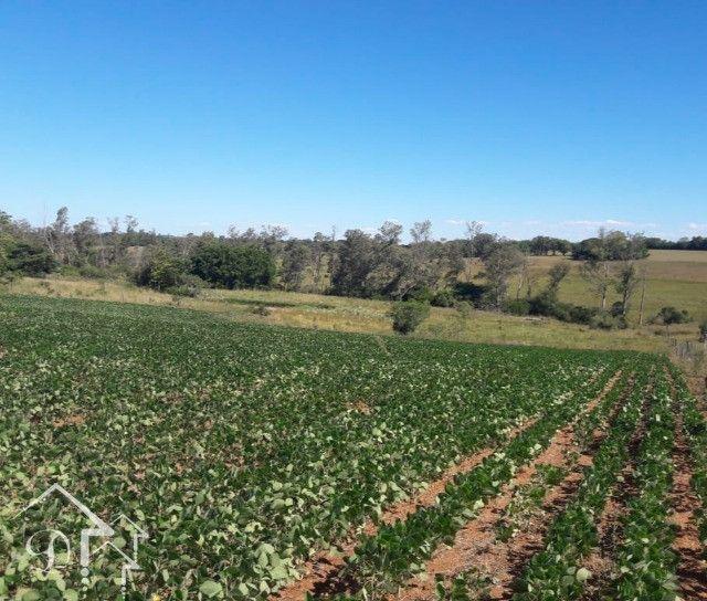 Área com 3,5 Hectares, Passo da Capivara Santa Maria -10022 - Foto 4