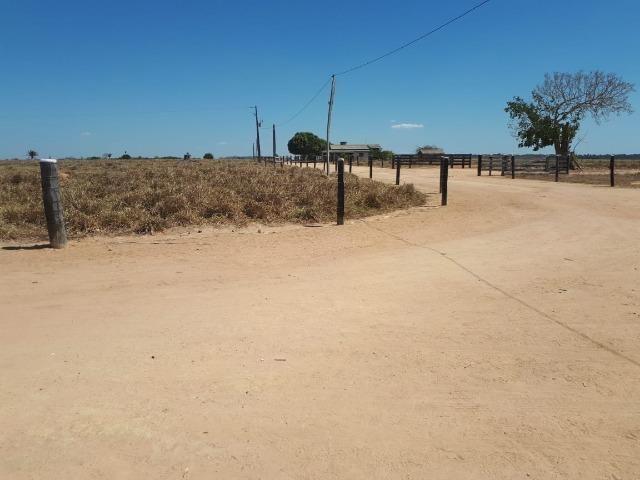 Fazenda de 220 alqueire em Novo Mundo -MT - Foto 7