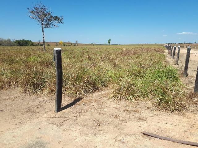 Fazenda de 220 alqueire em Novo Mundo -MT - Foto 9