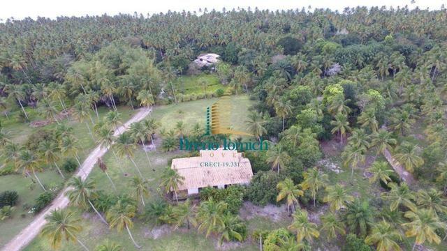 Terreno Residencial em Guaiu - Foto 5