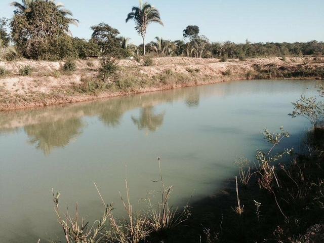 23 hectares p cultura e Psicultura - Foto 7