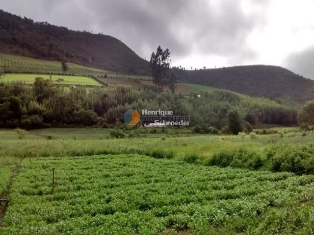 Fazenda produtiva, 116 ha, vale alpino, teresópolis, rj - Foto 6