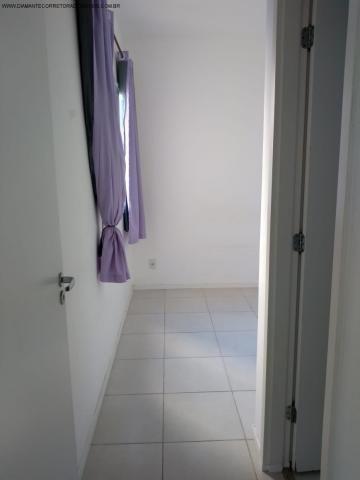 Apartamento à venda com 2 dormitórios em Morada de laranjeiras, Serra cod:AP00140 - Foto 3