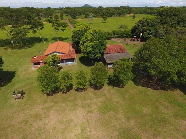 Chácara na região de Santo Antônio de Cuiabá com 32 HA Uma propriedade dos sonhos a 25 - Foto 2