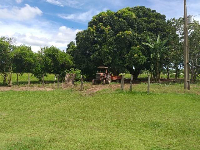 Chácara na região de Santo Antônio de Cuiabá com 32 HA Uma propriedade dos sonhos a 25 - Foto 4