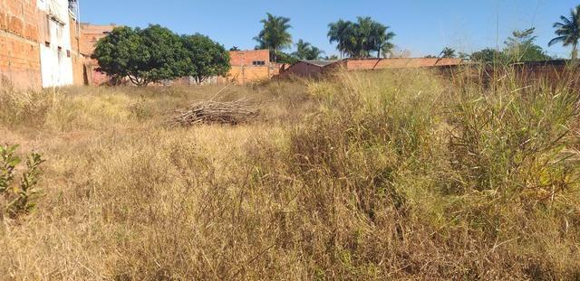 Oportunidade em planaltina DF vendo excelente lote de 1.150 metros no araponga - Foto 8