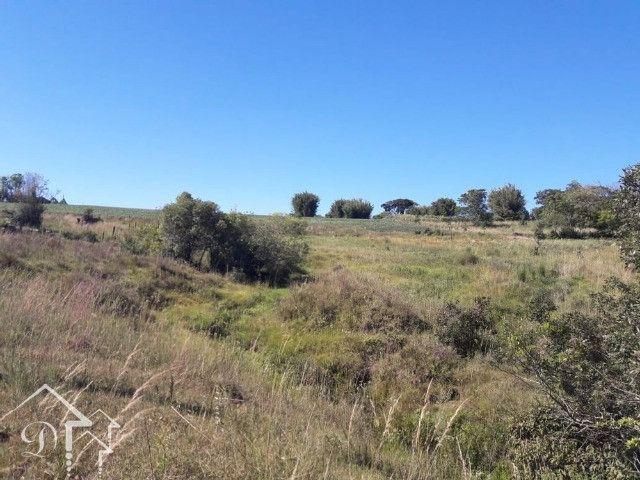 Área com 3,5 Hectares, Passo da Capivara Santa Maria -10022 - Foto 9