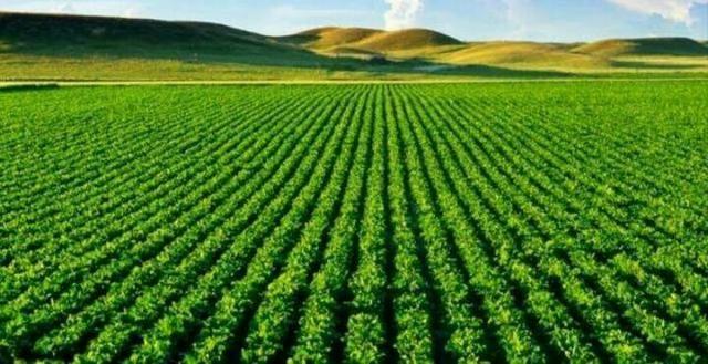 Somos especialistas em compra e venda de fazenda fale conosco * - Foto 2