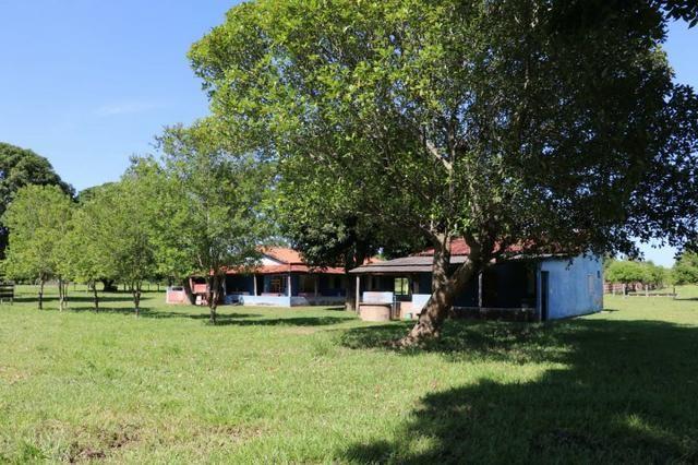 Chácara na região de Santo Antônio de Cuiabá com 32 HA Uma propriedade dos sonhos a 25 - Foto 5
