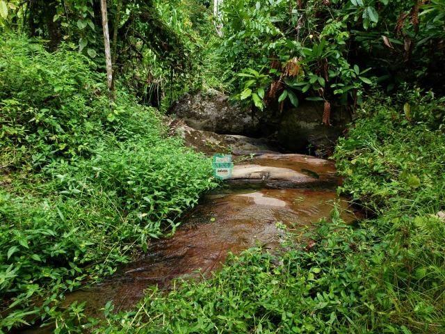 Fazenda de 290 Hectares com toda infraestrutura, rica em água mineral.+ Jazia de Mármore - Foto 2