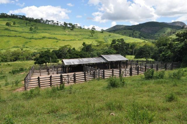 Vendo Fazenda com 1.110 alqueires Localizada em Teófilo Otoni-Mg - Foto 6