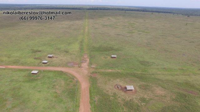 Arrenda fazenda 11.500 hectares nordeste mt nikolaiimoveis