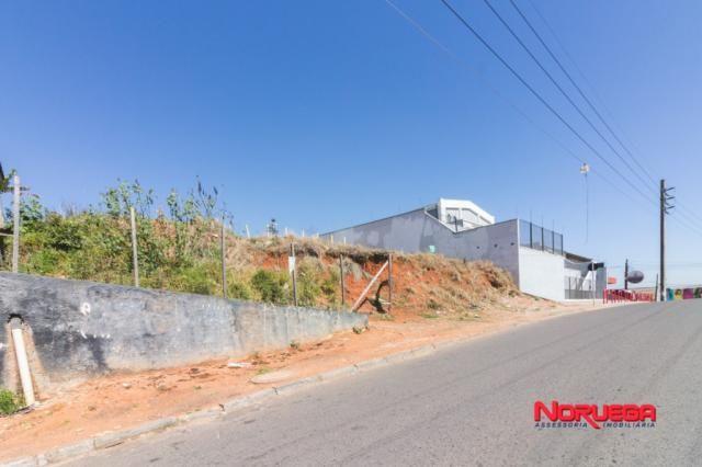 Terreno para alugar em Alto maracanã, Colombo cod:36400.001 - Foto 2