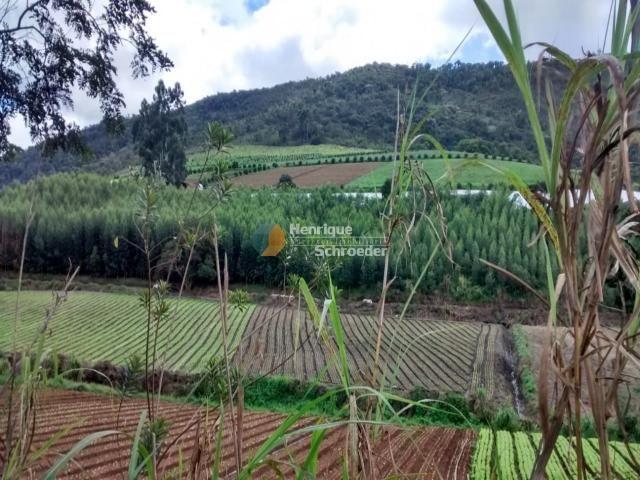 Fazenda produtiva, 116 ha, vale alpino, teresópolis, rj - Foto 7