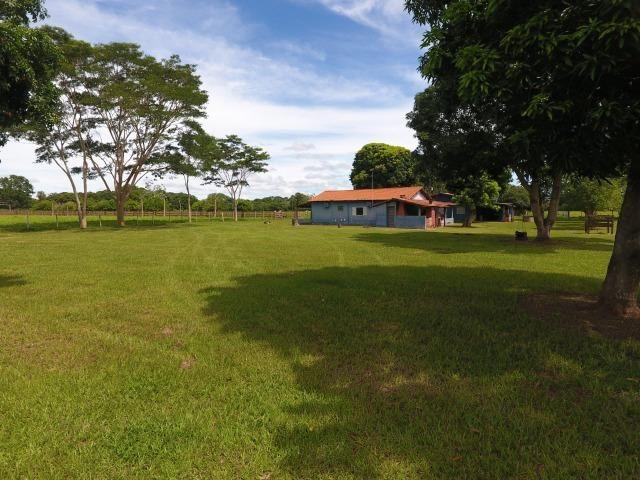 Chácara na região de Santo Antônio de Cuiabá com 32 HA Uma propriedade dos sonhos a 25 - Foto 16