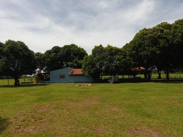 Chácara na região de Santo Antônio de Cuiabá com 32 HA Uma propriedade dos sonhos a 25 - Foto 9
