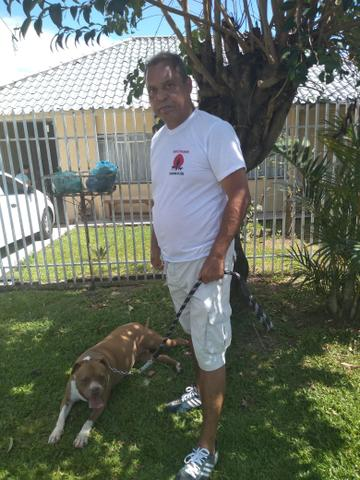 Passeador e Adestrador de cães - Foto 4