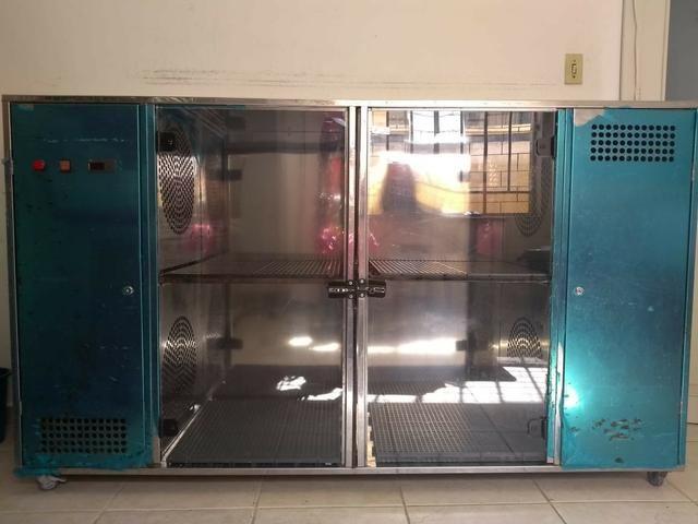 Maquina de secar cães - saara turbo - Foto 2